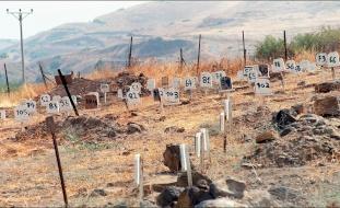 إسرائيل: لهذا السبب نجمع جثث الفلسطينيين!