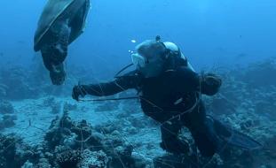 فيديو- ملك الأردن وولي عهده يغطسان لتنظيف مياه العقبة