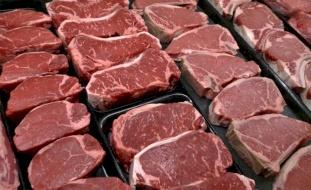 استيراد العجول بعد 40 يوما وأسعار اللحوم ستنخفض