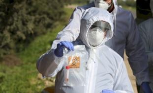 وزيرة الصحة: تسجيل إصابة جديدة بفيروس كورونا والحصيلة 161