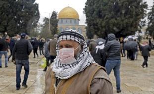 فلسطين.. 22 إصابة جديدة بكورونا منذ الصباح