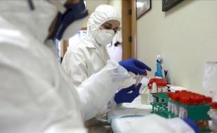 تسجيل  6 إصابات جديدة بفيروس كورونا و25 حالة تعافٍ