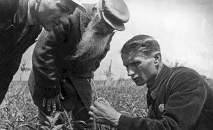 قبل عقود.. حاولت موسكو إطعام العالم فقتلت 7 ملايين جوعاً