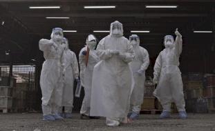 الصحة العالمية: حصيلة ضحايا كورونا في العالم أعلى من المعلن