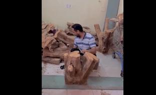 فيديو: موجة تعاطف واسعة مع سعودي كفيف يعمل حطّاباً