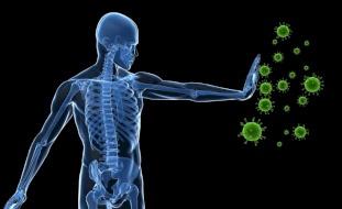 مصيبة عن متعافي كورونا.. مضادات تهاجم الجسم بدل الفيروس