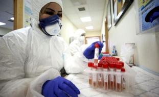 الصحة:17 وفاة و1703 إصابات جديدة بفيروس كورونا