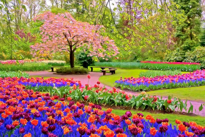 رسمياً..فصل الربيع يبدأ الجمعة