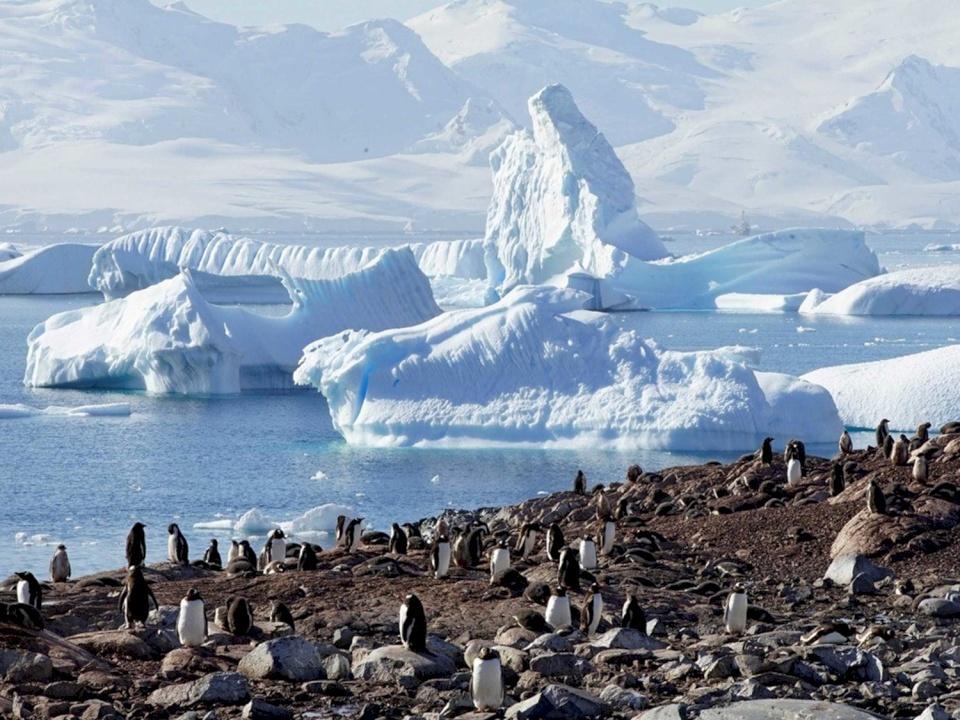 حرارة القطب الجنوبي ترتفع بأكثر من ثلاثة أضعاف المعدل العالمي