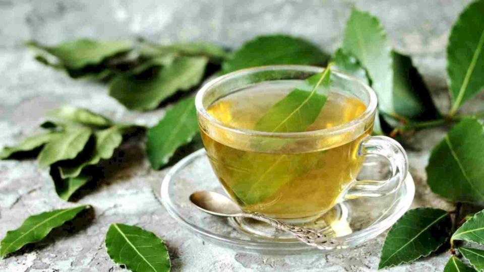 ما هو أفضل وقت لشرب الشاي الأخضر؟