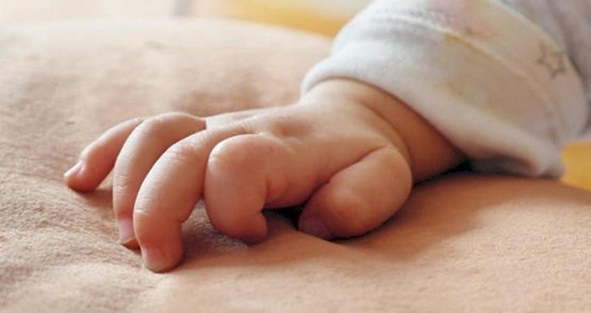 للسيدات الحوامل.. هذه العناصر الغذائية تزيد من ذكاء طفلك